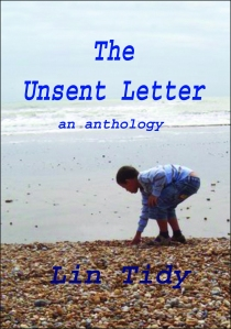 Front cover pic & writing copy (2)