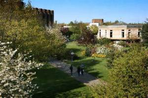 University of Kent Central campus Canterbury  tripadvisor.co.uk